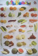 Poster - Fruits & Vegetables 挂图 – 水果与蔬菜